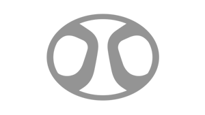BAIC - Logo grau