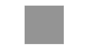 DFSK - Logo grau